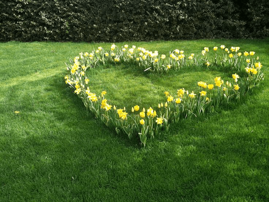 Declutter Your Love Life for Spring